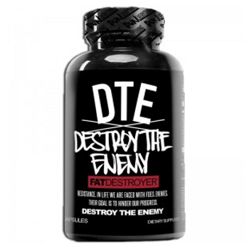 DTE – Destroy The Enemy Review