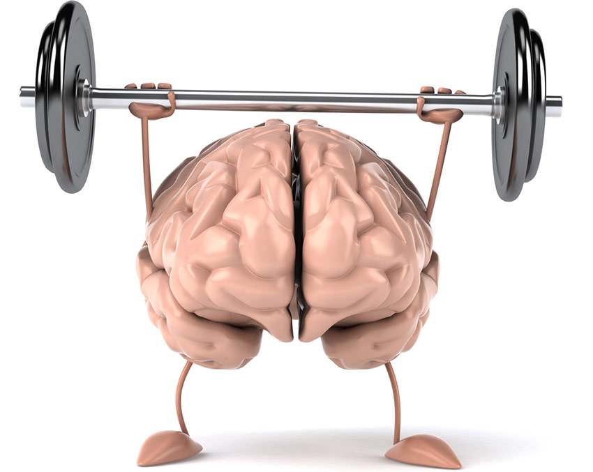 What is Mind-Muscle-Connection?