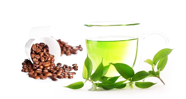 Caffeine and green tea combination has shown to improve fat loss even more than GTE would on its own.